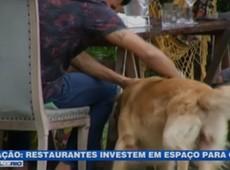 Restaurantes investem em espaço para cães