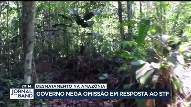 Governo nega omissão no combate ao desmatamento na Amazônia