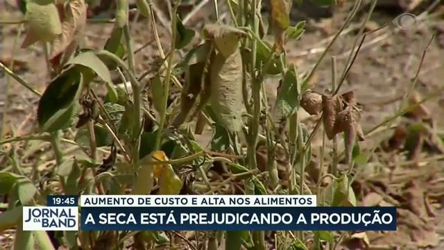 Seca está prejudicando produção no campo